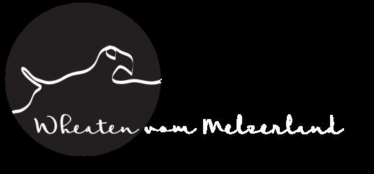 Wheaten vom Melzerland
